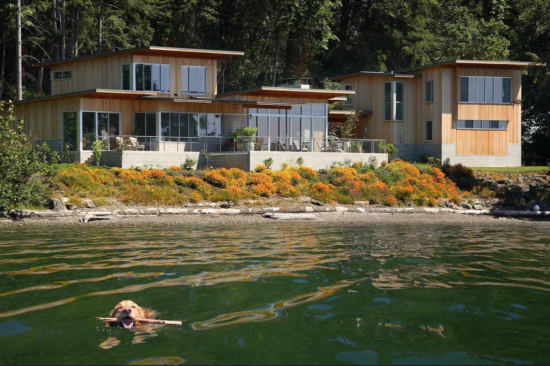 BIW Martin Bydalek waterfront dog andy moore